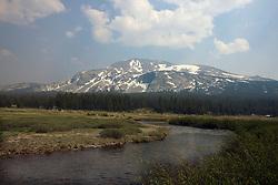 Dana Meadows with Mammoth Peak in the background, Yosemite National Park, California, USA.