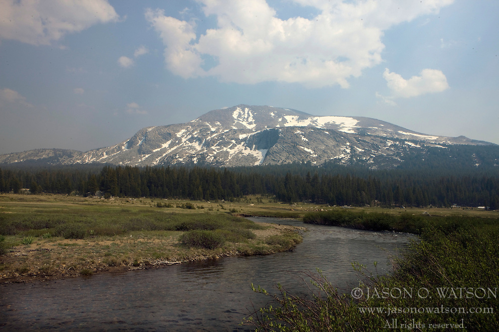 Dana Meadows with Mammoth Peak in the background, Yosemite National Park, California, USA.