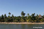 beach at Kanantik Resort, Stann Creek District, near Dangriga, Belize, Central America ( Caribbean Sea )