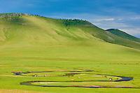 Mongolie, Arkhangai, troupeaux dans la steppe // Mongolia, Arkhangai province, herd in the steppe