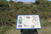Information panel about bird migration at Landguard Fort, Felixstowe, Suffolk, England, UK