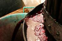 Una veduta della fuoriuscita del mosto. Durante la prima spremitura possono capitare i vinaccioli e parte delle bucce. Tutti questi elementi danno caratteristiche organolettiche al vino.