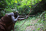 A male Batwa tribesman demonstrates hunting animals using a bow and arrow in Bwindi Impenetrable Forest.  The Batwa were indigenous forest nomads before they were evicted from the Bwindi Impenetrable Forest when it was made a World Heritage site to protect the mountain gorillas.  The Batwa Development Program now supports them.