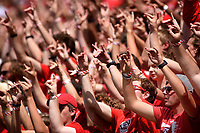 Fans hold up wuf hands during football game in Carter-Finley Stadium.