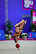 Meleshchuk Yeva during the qualification of the ball at the Pesaro World Cup 2018.<br />