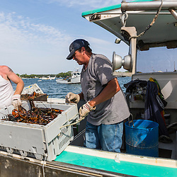 "Ryan Schultz (left) helps Captain Mark Havener unload lobsters from his boat, ""Who R U"" at the Friendship Lobster Co-op in Friendship, Maine."