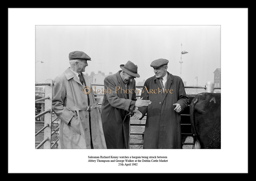 Salesman Richard Kenny watches a bargain being struck between Abbey Thompson and George Walker at the Dublin Cattle Market<br /> 25th April 1962