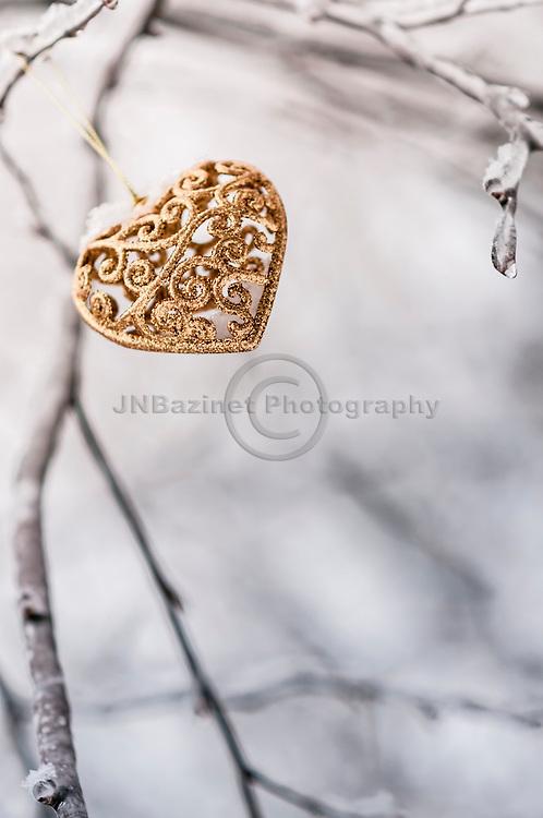Golden heart in a winter forest