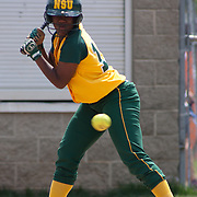 04/21/12 Dover Del. Norfolk State Danielle Wright #17 takes a strike in the first inning of a NCAA Softball game against Delaware State Saturday, April. 21, 2012 at The Hornets Nest in Dover Del.<br />