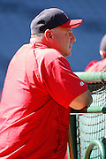 ANAHEIM, CA - JULY 28:  Mike Scioscia #14 manager of the Los Angeles Angels of Anaheim watches batting practice before the game against the Tampa Bay Rays on Saturday, July 28, 2012 at Angel Stadium in Anaheim, California. The Rays won the game in a 3-0 shutout. (Photo by Paul Spinelli/MLB Photos via Getty Images) *** Local Caption *** Mike Scioscia