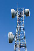 microwave parabolic dish antenna radio link on lattice tower in Gumlu, Queensland, Australia