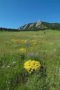 Summer photograph of the flatirons in Boulder, Colorado