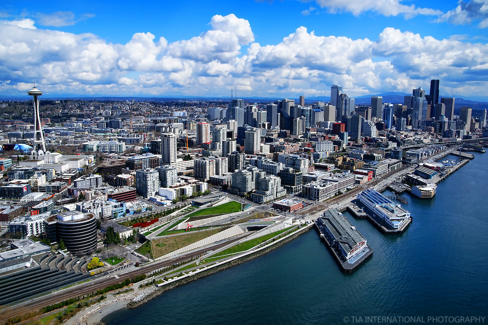 Downtown Seattle, Olympic Sculpture Park, and Space Needle