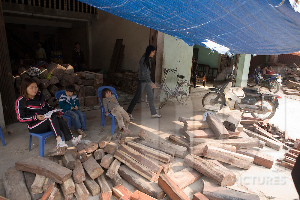 Stock of wood in the craft village of Dong Ky, specialized in wood furnitures manufacture. Vietnam, Asia