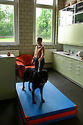 Switzerland, Uzwil, Health Balance clinic for animals....Nando the dog and his owner wait for a visit from the vet. Nando..suffers from excessive nervousness that prevents him from passing the..test that will allow him to work as a rescue dog... The goldfish swims lazily between the fronds of fake seaweed, under the attentive gaze of the medical staff. ?When he came here he was moving all wrong. He swam crooked, he was almost upside-down,? explains Marisa Polanec, obviously enthusiastic at the result. For it appeared that the littlest in-patient at Health Balance, the Swiss clinic for animals, had been suffering from electrosmog poisoning. ..An unusual complaint, yes, but here, in the midst of the clinic?s futuristic architecture and the green hills of San Gallo canton, the concept of normality is done away with even before arriving at a diagnosis. That?s because, to identify the cause of the goldfish?s suffering, Urs Buehler ?kinesiologist and the centre?s founder, as well as the owner of an industrial colossus in the region ?simply asked it, by using his ever-present dowsing rod. .. The goldfish swims lazily between the fronds of fake seaweed, under the attentive gaze of the medical staff. ?When he came here he was moving all wrong. He swam crooked, he was almost upside-down,? explains Marisa Polanec, obviously enthusiastic at the result. For it appeared that the littlest in-patient at Health Balance, the Swiss clinic for animals, had been suffering from electrosmog poisoning. ..An unusual complaint, yes, but here, in the midst of the clinic?s futuristic architecture and the green hills of San Gallo canton, the concept of normality is done away with even before arriving at a diagnosis. That?s because, to identify the cause of the goldfish?s suffering, Urs Buehler ?kinesiologist and the centre?s founder, as well as the owner of an industrial colossus in the region ?simply asked it, by using his ever-present dowsing rod. ....Il pesciolino rosso nuota flessuoso tra l