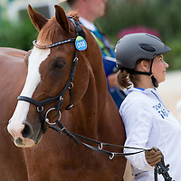 Horse Inspection - Rio 2016 Paralympic Games
