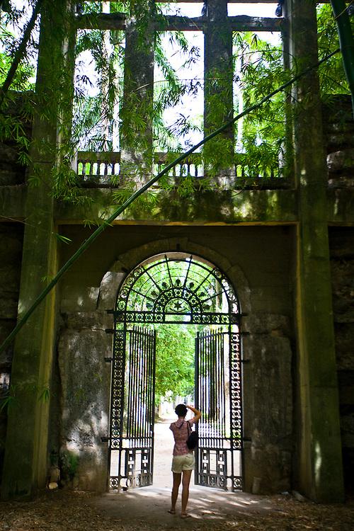 Rio de Janeiro_RJ, Brasil...Mulher fotografando o Jardim Botanico no Rio de Janeiro...A woman taking photos in the Botanic Garden in Rio de Janeiro...Foto: JOAO MARCOS ROSA / NITRO
