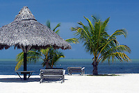 5 July 2006: Beach scene along the Florida Keys with a white sand beach, grass hut, chairs, palm trees, blue sky and warm ocean water. Sea view from the beach of the Atlantic Ocean.