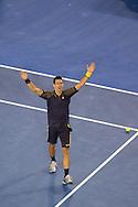 Novak Djokovic (SRB). Day 14. Mens Singles Final. Australian Open Grand Slam Tennis Championship. Rod laver Arena, Melbourne Park, Melbourne, Victoria, Australia. 27/01/2013. Photo By Lucas Wroe