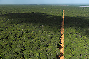 Dirt Road through rainforest<br /> Iwokrama <br /> Rupununi<br /> GUYANA<br /> South America