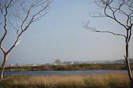 Inside the evacuated zone, the Fukushima Daiichi Nuclear Power Plant in the horizon, Fukushima, Japan.