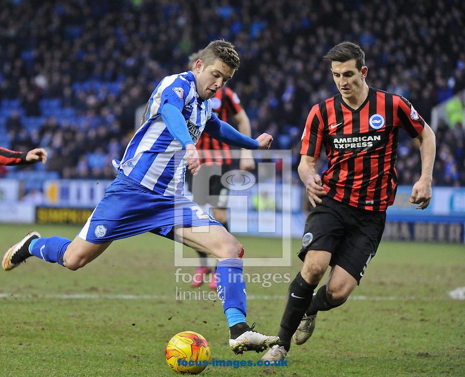 Sergiu Bus of Sheffield Wednesday shoots wide during the Sky Bet Championship match at Hillsborough, Sheffield<br /> Picture by Richard Land/Focus Images Ltd +44 7713 507003<br /> 14/02/2015