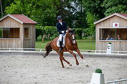 WEGO Nicole (GER), Didou<br /> Redefin - Pferdefestival 2019<br /> BreFood-Preis<br /> Einlaufprüfung zur Qualifikation zum Bundeschampionat der 6j. Dressurpferde<br /> Dressurpferdeprüfung Kl. M für 6-jährige Pferde<br /> 24. Mai 2019<br /> © www.sportfotos-lafrentz.de/Stefan Lafrentz