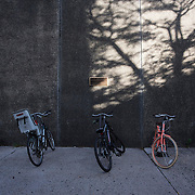 October 4, 2016 - New York, N.Y. : Bicycles are chained to racks along Convent Ave. near the Marshak Science Building at the City College of New York on Tuesday afternoon, October 4. <br /> CREDIT: Karsten Moran for The New York Times