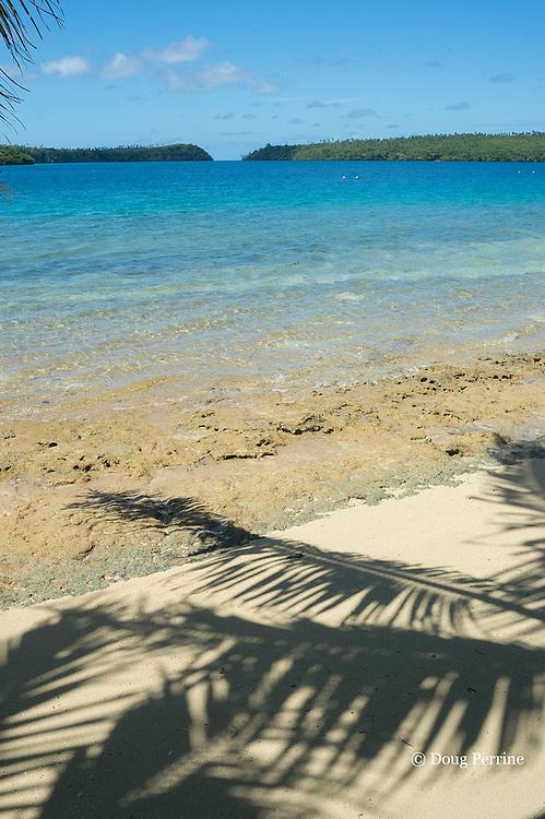 shadow of coconut palm tree on beach at Ika Lahi Lodge, Hunga Island, Vava'u, Kingdom of Tonga, South Pacific