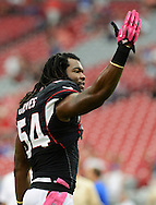 Oct. 14, 2012; Glendale, AZ, USA;  Arizona Cardinals linebacker Quentin Groves (54) warms up prior to the game against the Buffalo Bills at University of Phoenix Stadium. Mandatory Credit: Jennifer Stewart-US PRESSWIRE..
