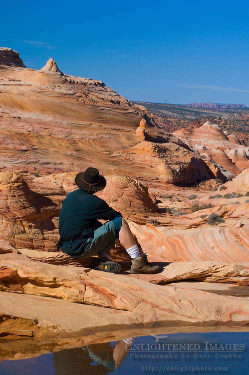 Hiker next to seasonal pool of water at The Wave, Coyote Buttes, Paria Canyon Vermilion Cliffs Wilderness, Arizona