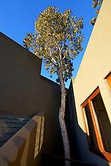 Henry House, Leucadia, Ca, Watts Design