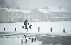 © Licensed to London News Pictures. 27/02/2020. Stokenchurch, UK. A man walks his dogs in heavy snowfall in Stokenchurch, Buckinghamshire, England, as the south east is hit by snow for the first time in 2020. Large parts of the UK are experiencing heavy flooding with flood barriers being breached in worst hit areas. Photo credit: Ben Cawthra/LNP