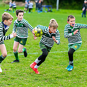 Greystones Rugby Football Club - Alan Rowlette Photography