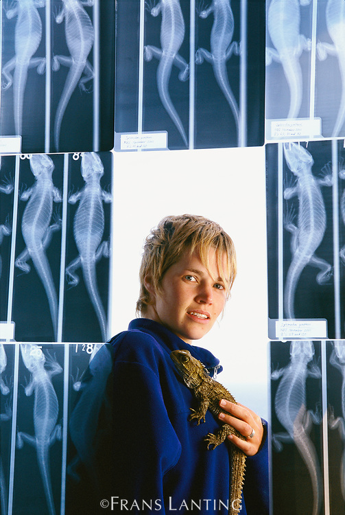 Researcher with x-rays of tuatara,  North Brother Island, New Zealand