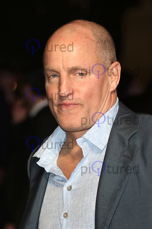 Woody Harrelson, Three Billboards Outside Ebbing, Missouri - BFI LFF Closing Gala, Leicester Square, London UK, 15 October 2017, Photo by Richard Goldschmidt