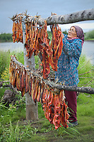 Vera Spein hangs salmon on a drying rack at fish camp near Kwethluk, Alaska. Dried, smoked, and fresh salmon are staples of the subsistence lifestyle.