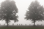 A cyclist rides along the Portland waterfront on a foggy morning