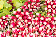 Radishes among salad vegetables and fresh food on sale at street market Bordeaux, France