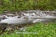66745-04505 Straight Fork Creek in spring, Great Smoky Mountains National Park, NC