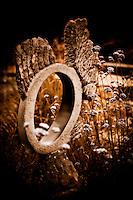 Zimsculpt at Van Dusen Botanical Garden: Angel Fish - springstone sculpture by Dominic Benhura (original sculpture available at www.zimsculpt.com)