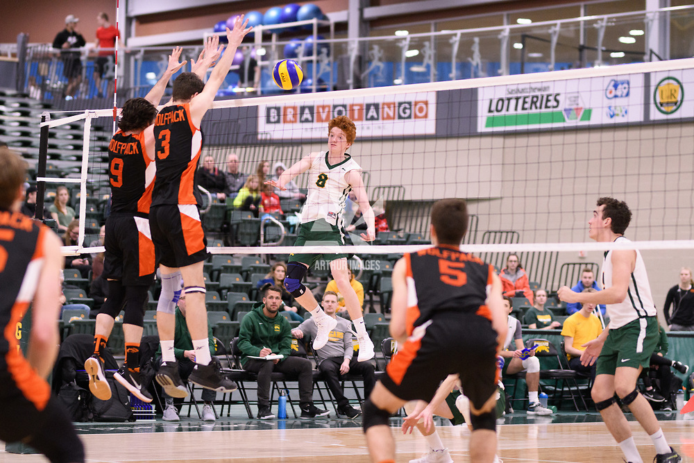 1st year outside hitter Rylan Metcalf (8) of the Regina Cougars in action during Men's Volleyball home game on January 13 at Centre for Kinesiology, Health and Sport. Credit: /Arthur Images 2018