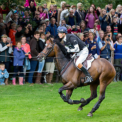 William Fox-Pitt Injured | France | 21 October 2015