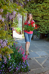 Bringing a tender plant (pelargonium) outdoors for the summer