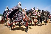 Les cavaliers de Djougou