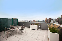 Roof Deck at 189 Schermerhorn Street