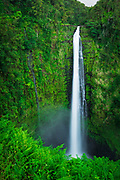 Akaka Falls, Akaka Falls State Park, The Big Island, Hawaii USA