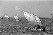 Fishing boats on the Jaffna lagoon. 1993.
