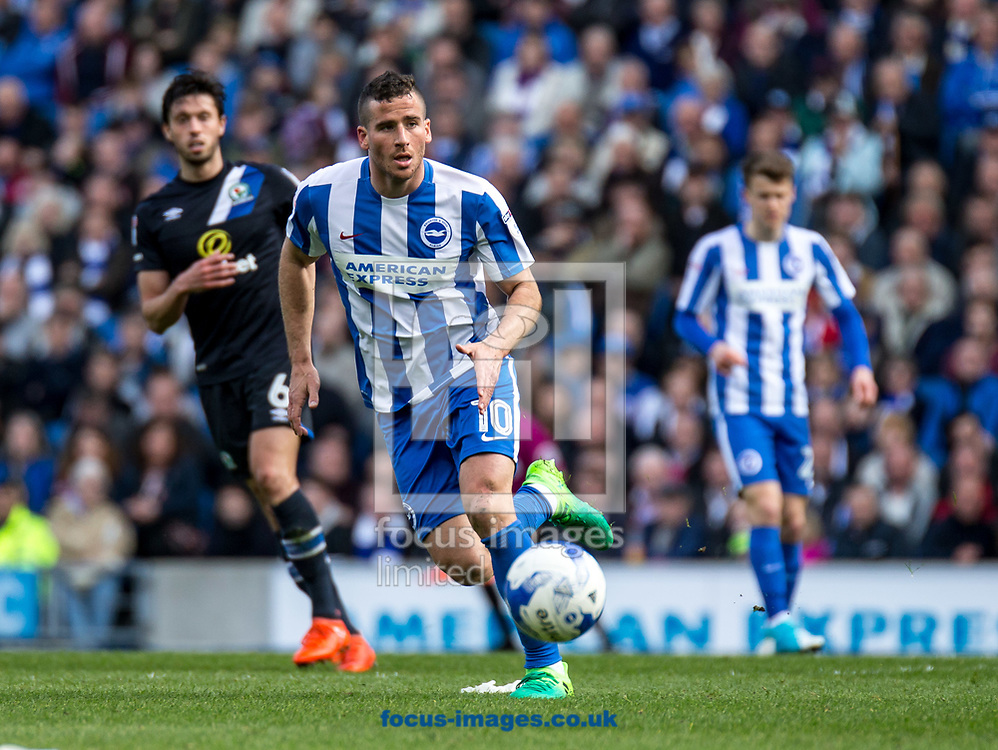 Tomer Hemed of Brighton &amp; Hove Albion during the Sky Bet Championship match at the American Express Community Stadium, Brighton and Hove<br /> Picture by Liam McAvoy/Focus Images Ltd 07413 543156<br /> 01/04/2017