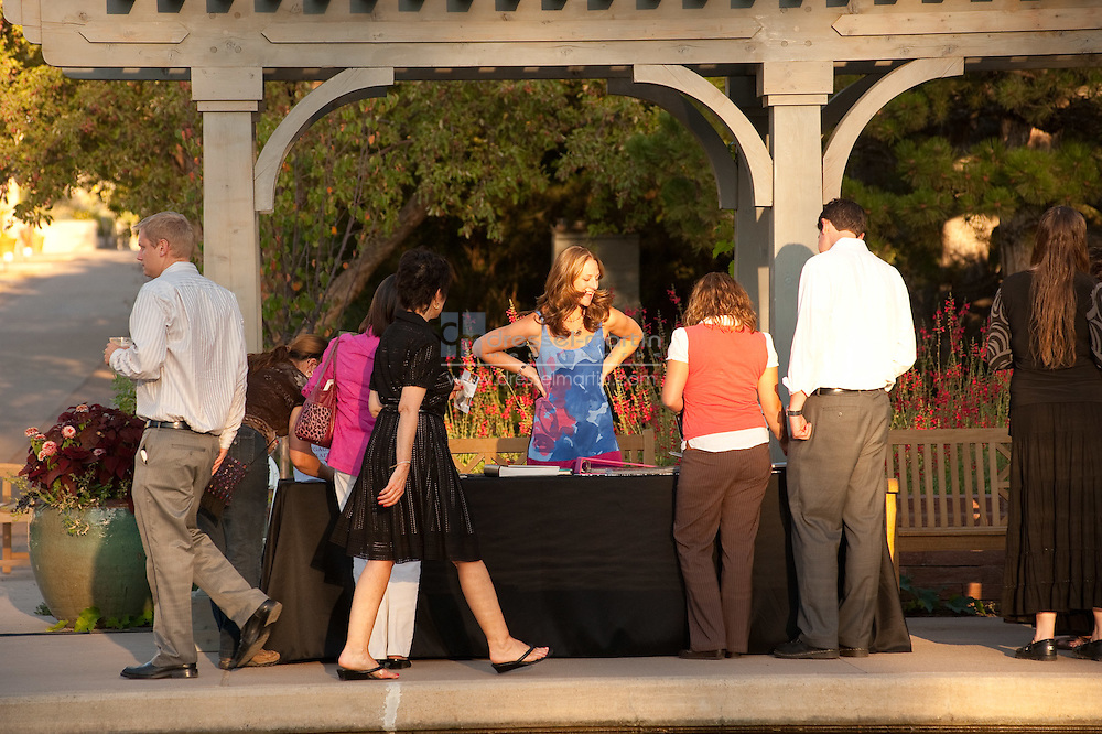 2010 wedding Showcase